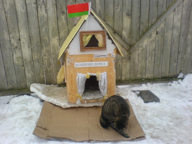 Красивые пасха, кошкин дом смешные картинки