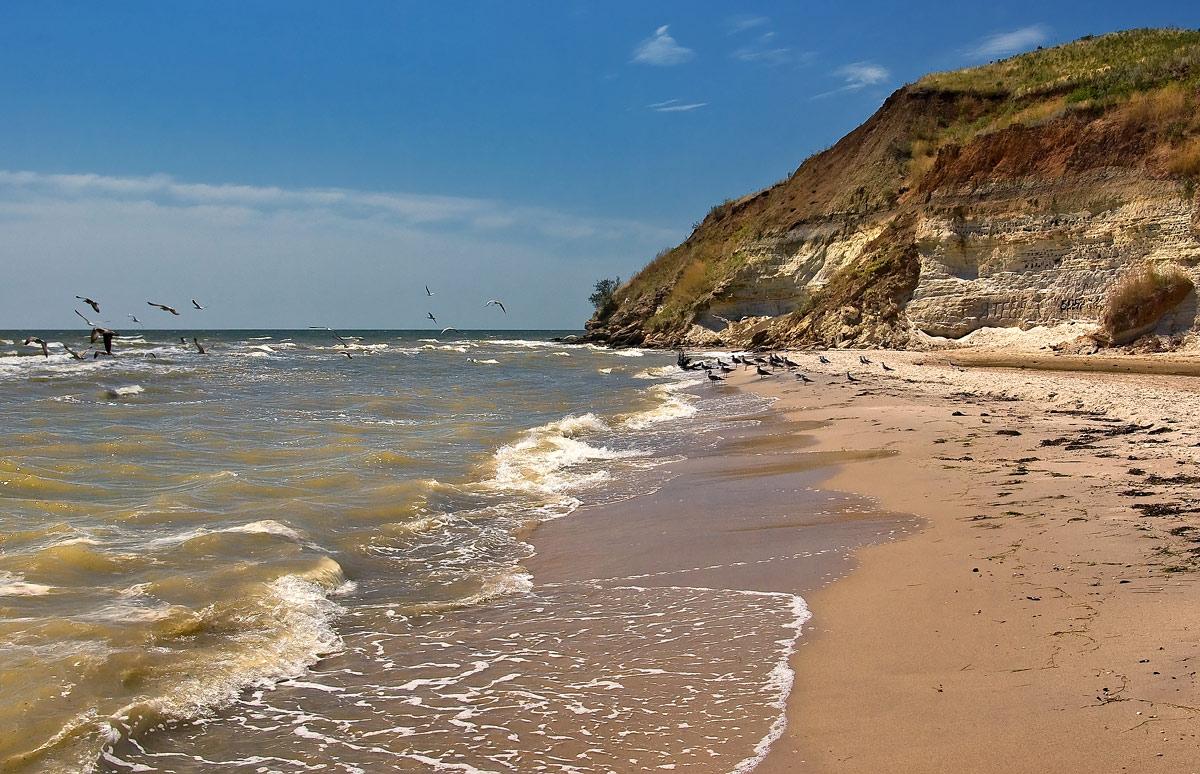 основана картинки азовского моря краснодарский край расписались они