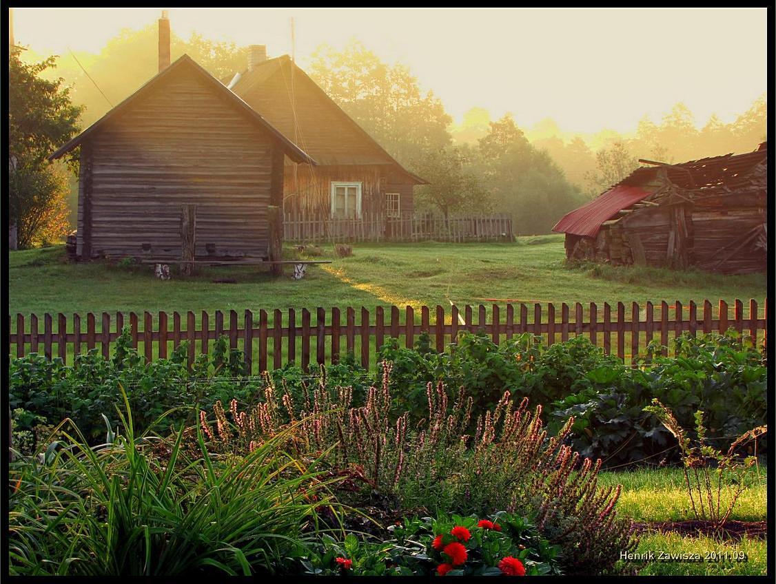Картинки моя деревня, милые
