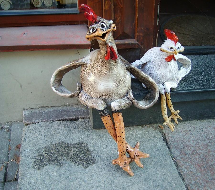 картинка зуевская курица прикольная известно, что только