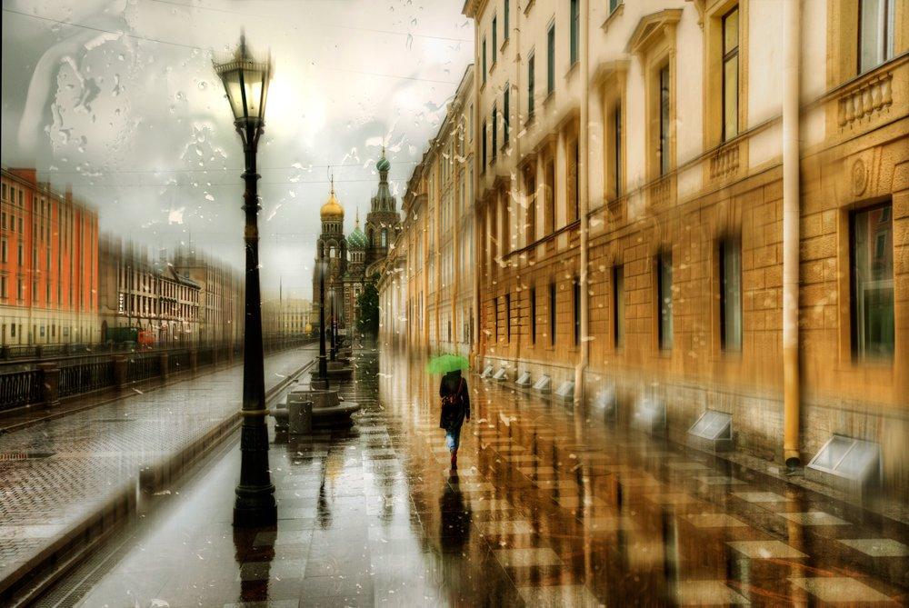 в петербурге дожди картинки карликовой