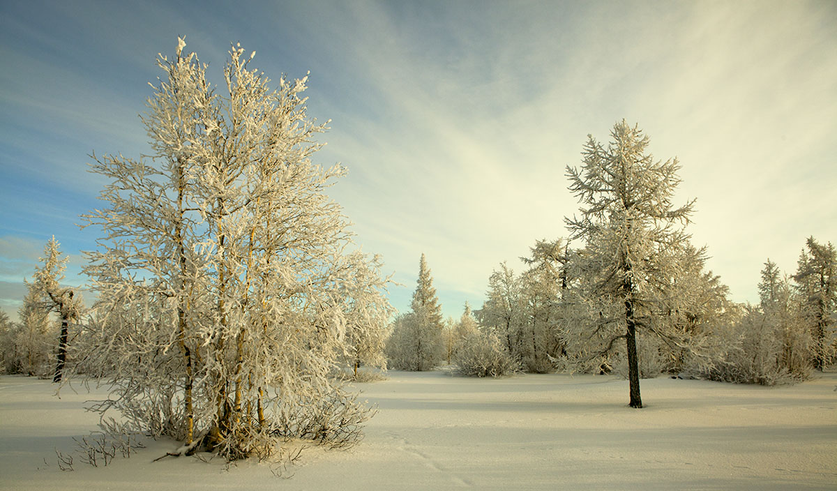 Гифки зимняя красота
