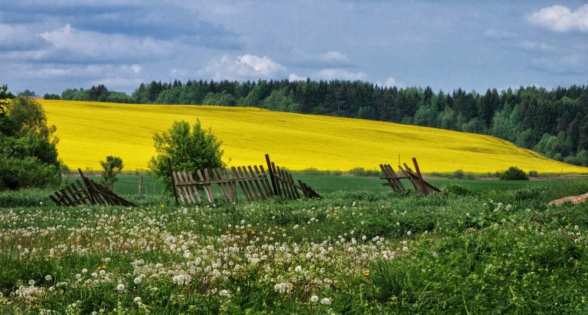 Средой добрым, картинки родной край беларусь