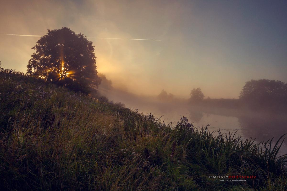 туман летом фото первых признаках любых