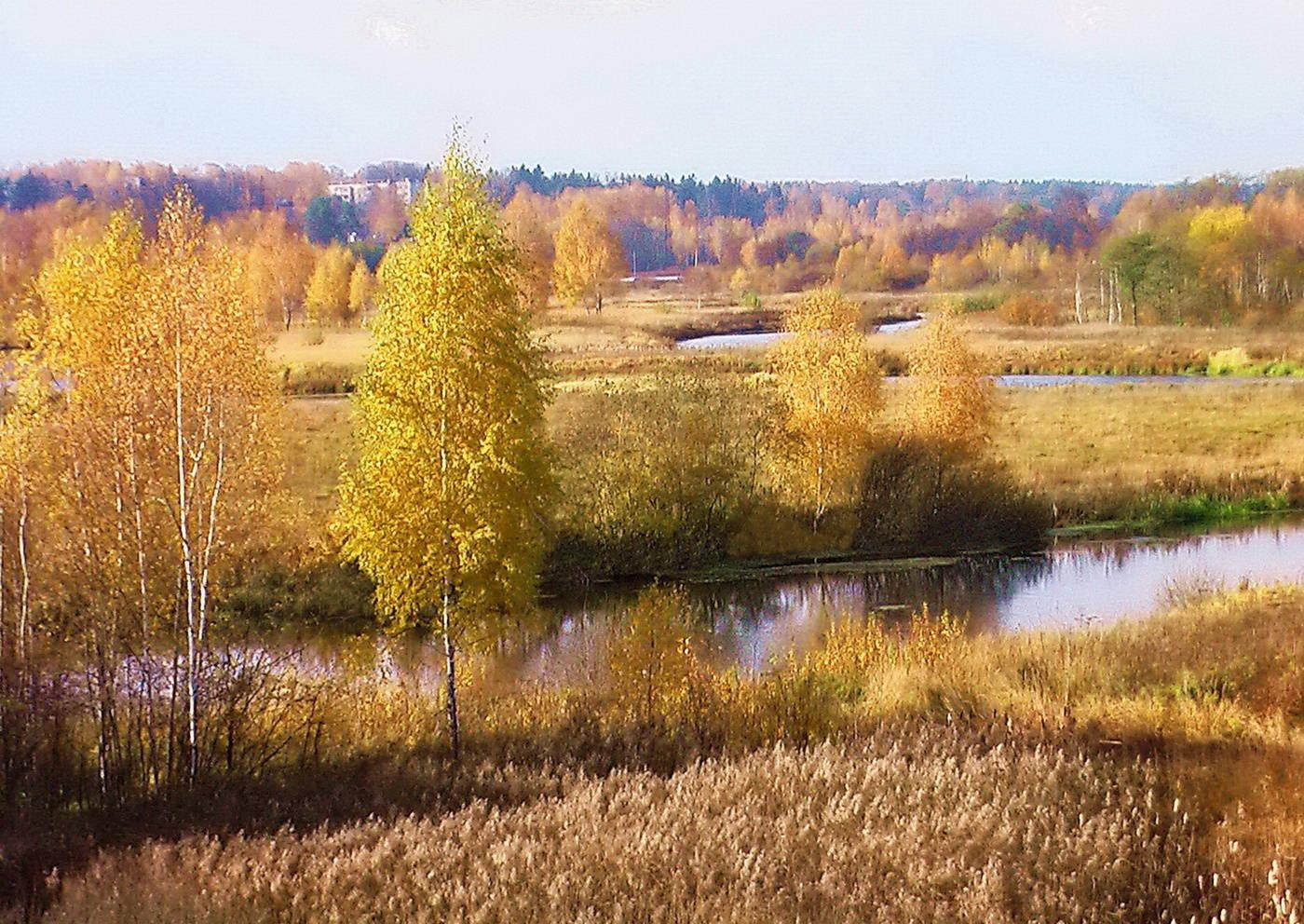 картинки подмосковье осень