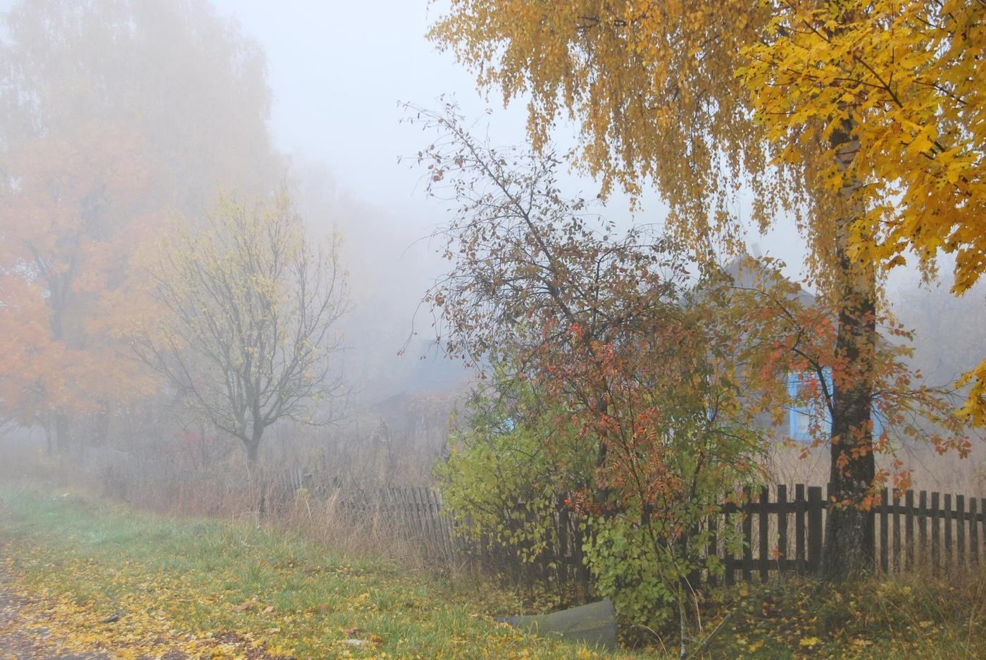 фотографии дождливая осень в деревне при