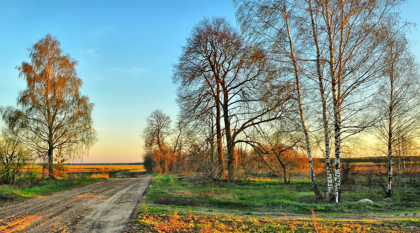 Фото белорусская природа весной