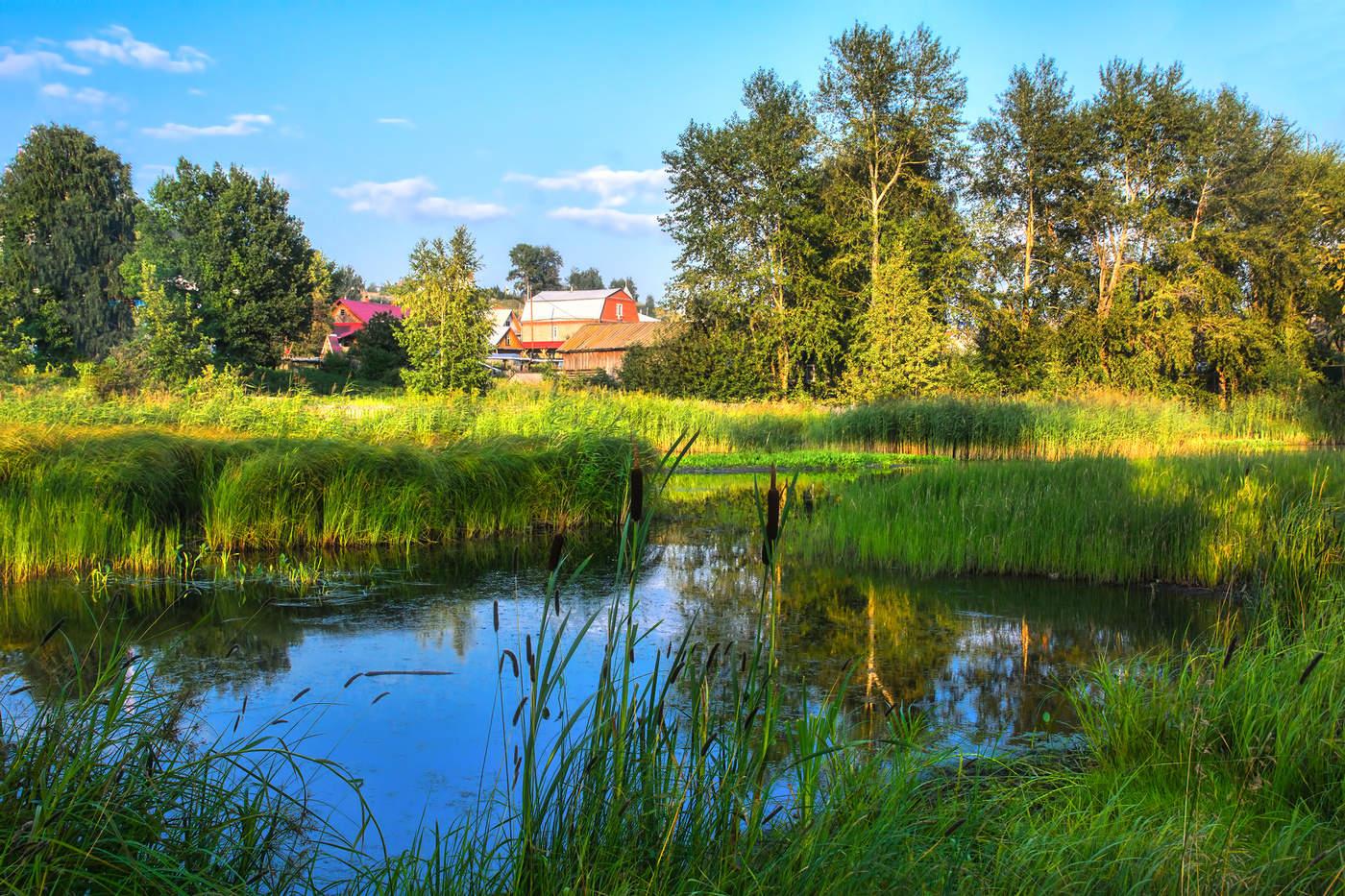 Фото деревня летом — img 11