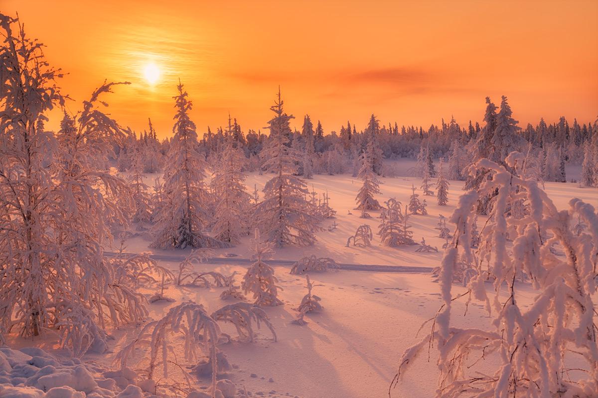 общем только пейзаж север зима фото качели