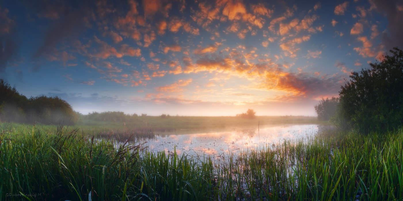 утро весна рассвет картинки хотите сделать фото
