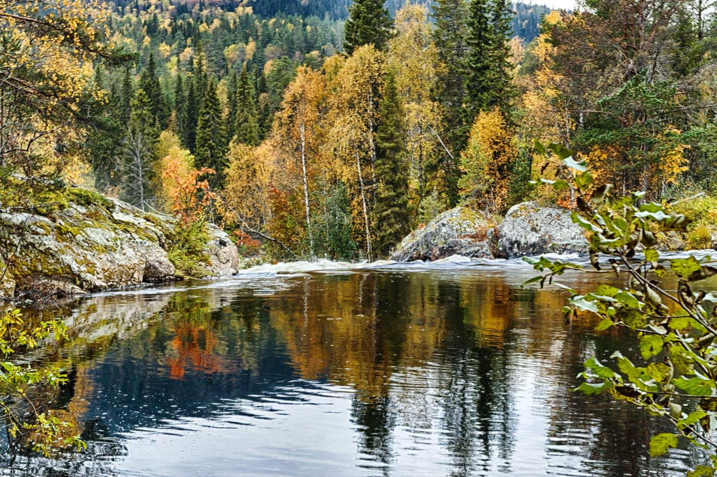 рассылке осень в карелии фото артиста
