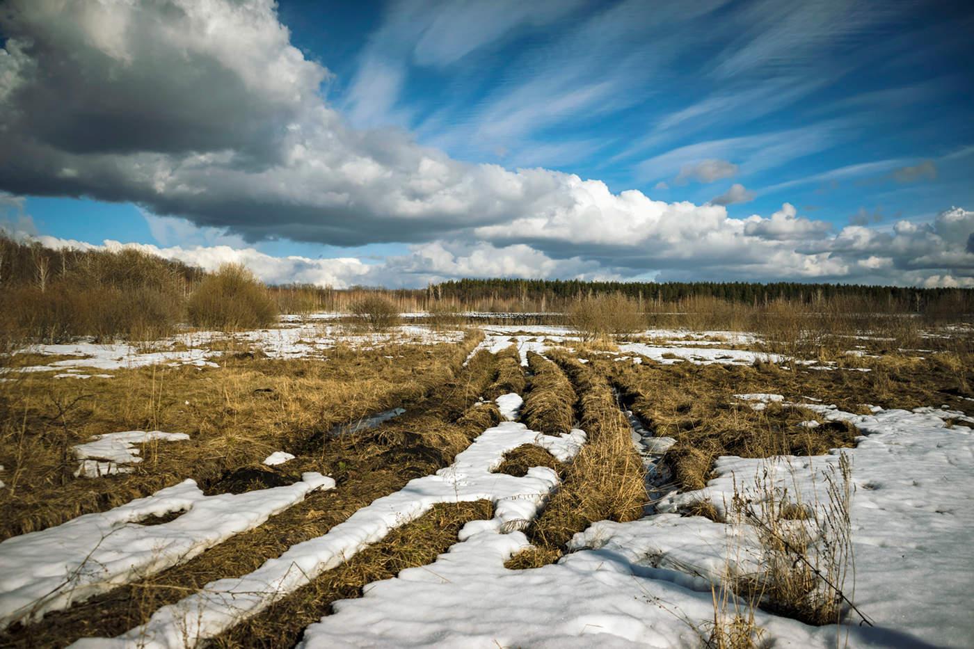 Фото весенних полей со снегом