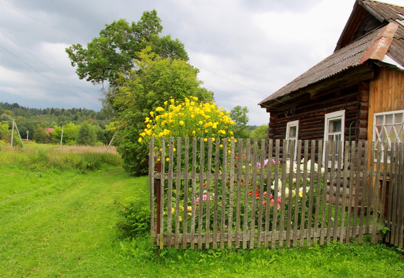 Русский домик в деревне картинки